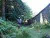 9/9/2012 - Trail delle Foreste Casentinesi